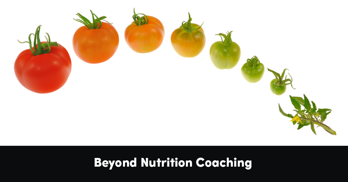 Beyond Nutrition Coaching