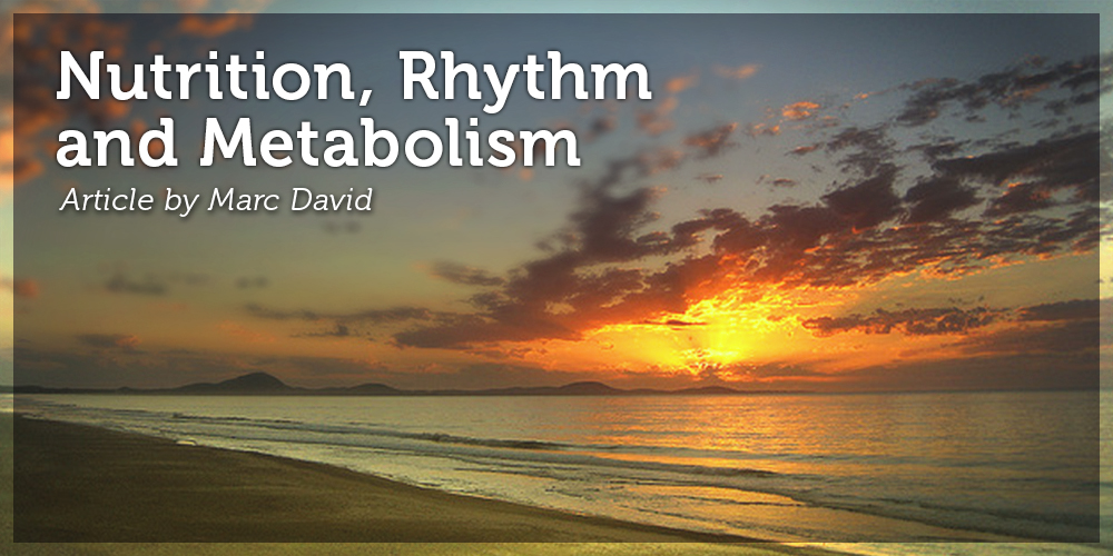 Nutrition, Rhythm and Metabolism