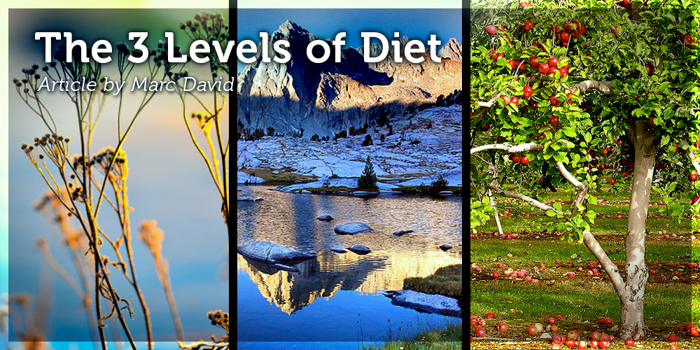 The 3 Levels of Diet