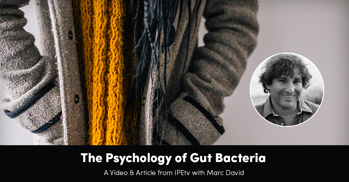 the-psychology-of-gut-bacteria