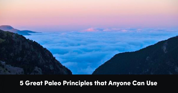 5-great-paleo-principles-that-anyone-can-use