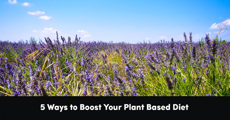 5-ways-to-boost-your-plant-based-diet