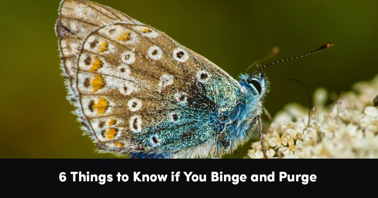 6-things-to-know-if-you-binge-purge