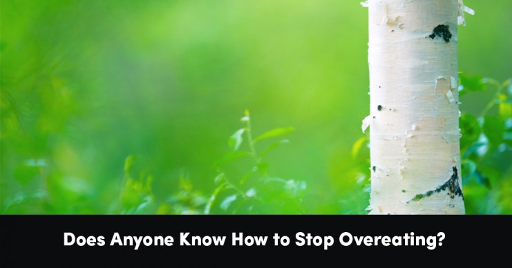 does-anyone-know-how-to-stop-over-eating