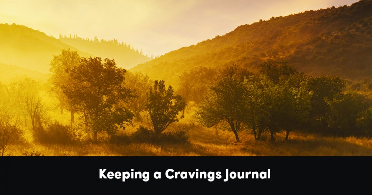 keeping-a-cravings-journal