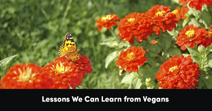 lessons-we-can-learn-from-vegans