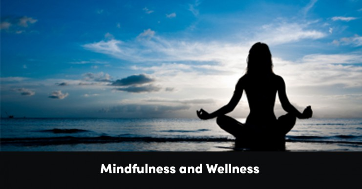 mindfulness-and-wellness