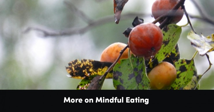 more-on-mindful-eating