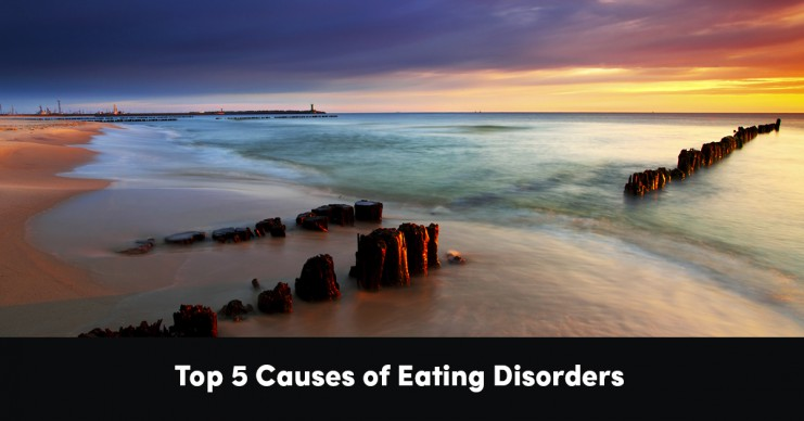 top-5-causes-of-eating-disorders