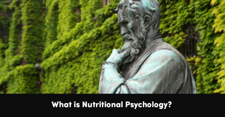 what-is-nutritional-psychology