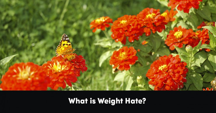 what-is-weight-hate