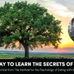 the-best-way-to-learn-the-secrets-of-longevity