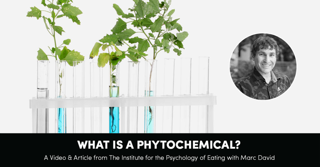 What Is A Phytochemical?